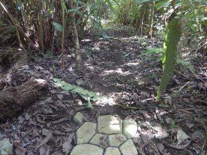 www.viaitPuertoArmuelles.com